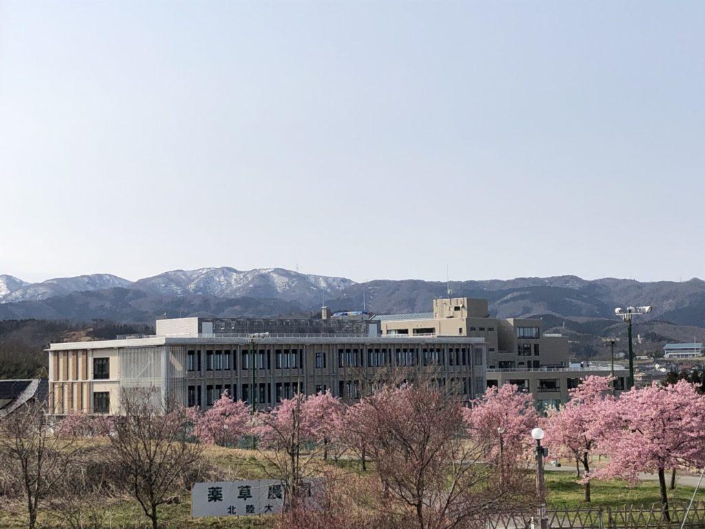 201903北陸大学4