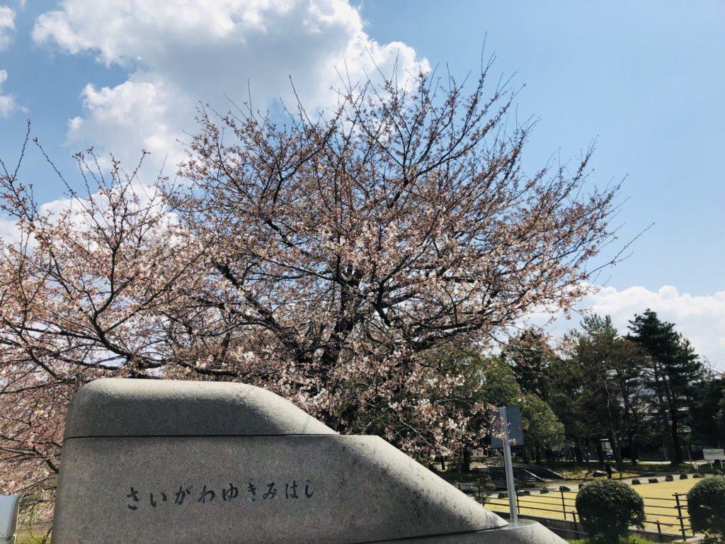 20190405犀川2