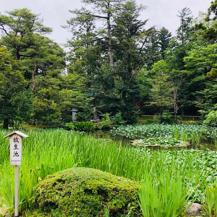 20190704金沢神社2